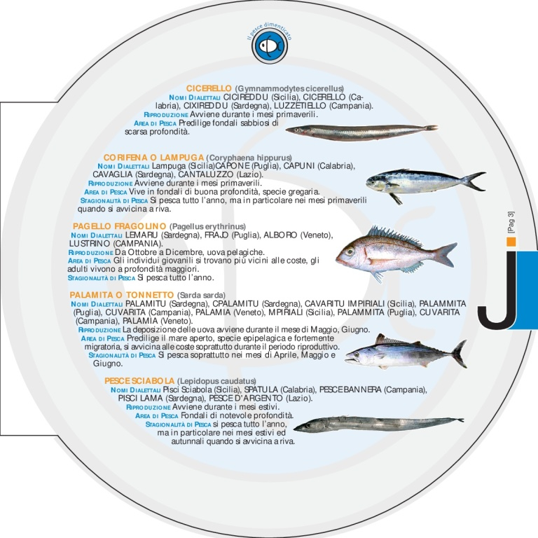 DEPLIANT_pesce_dim[1]-007