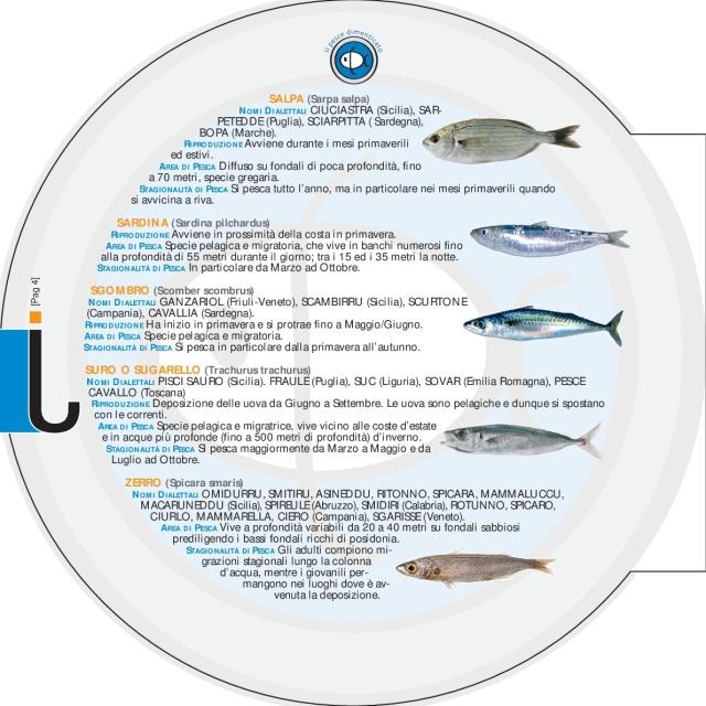 DEPLIANT_pesce_dim[1]-008