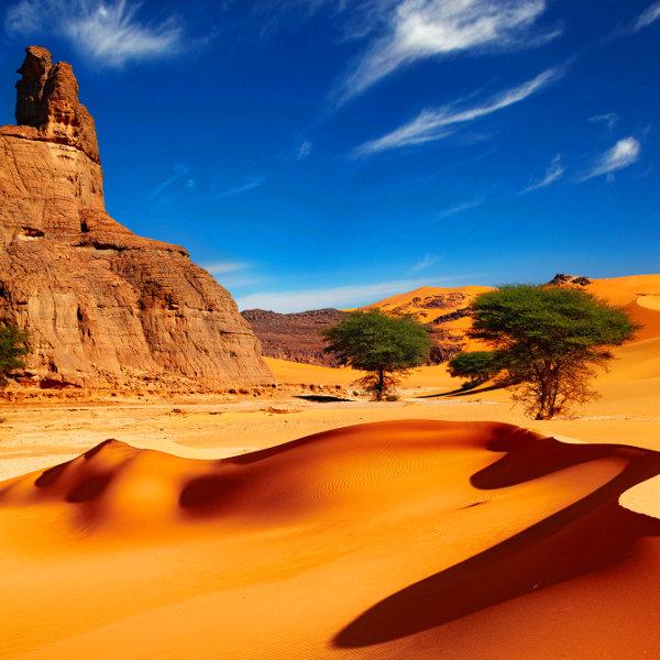 algeria-sahara-desert-usp